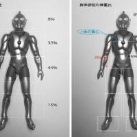 人の体重比